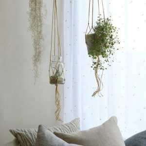 [Handmade] Làm chậu hoa treo tường chỉ với cuộn dây trong 10 phút